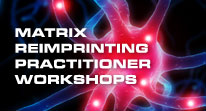 Matrix Reimprinting Practitioner Workshops